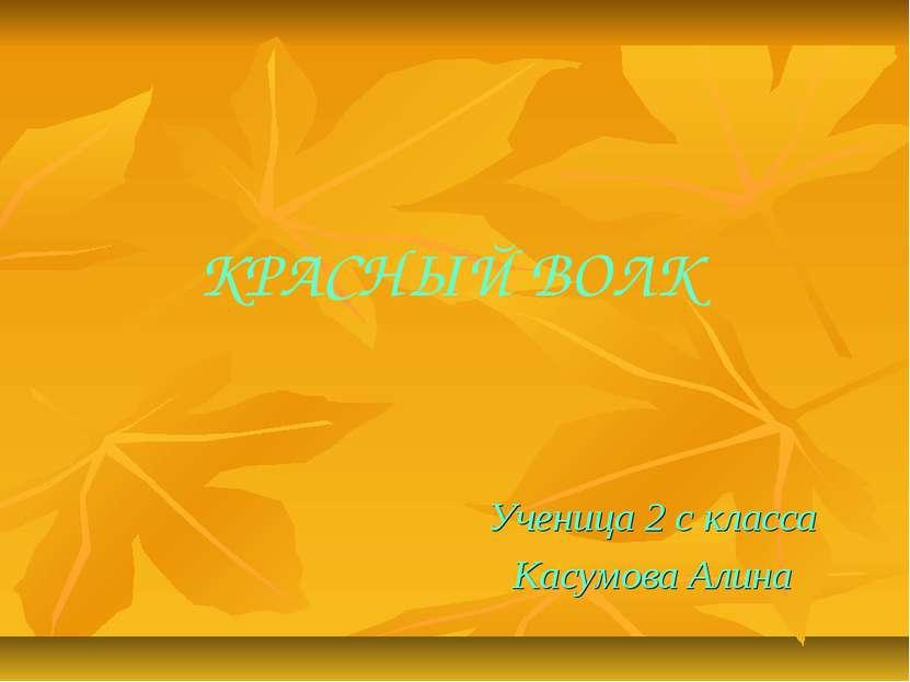 КРАСНЫЙ ВОЛК Ученица 2 с класса Касумова Алина