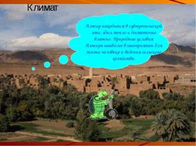 Климат Алжир находится в субтропической зоне, здесь тепло и достаточно влажно...