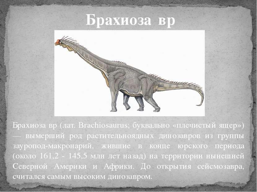 Брахиоза вр (лат. Brachiosaurus; буквально «плечистый ящер») — вымерший род р...