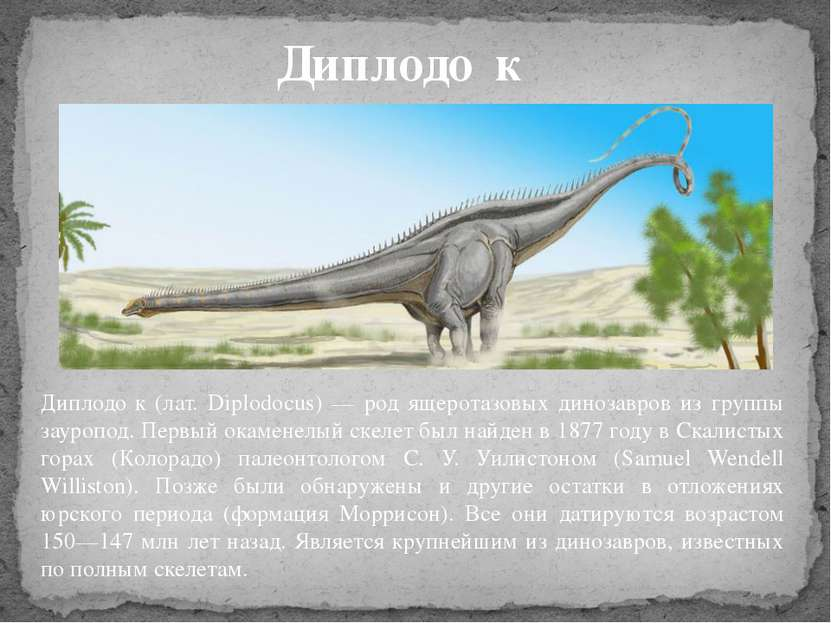 Диплодо к (лат. Diplodocus) — род ящеротазовых динозавров из группы зауропод....