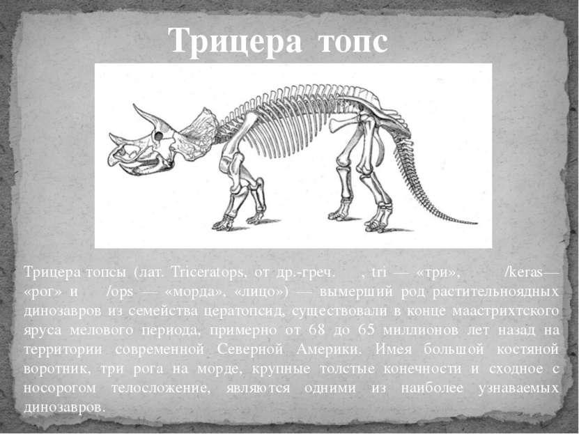 Трицера топсы (лат. Triceratops, от др.-греч. τρι, tri — «три», κέρας/keras— ...