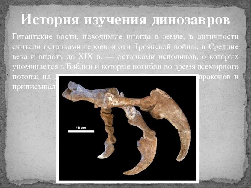 История изучения динозавров Гигантские кости, находимые иногда в земле, в ант...