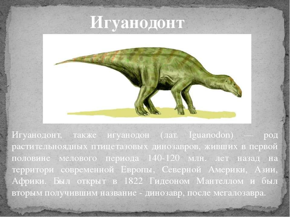 Игуанодонт, также игуанодон (лат. Iguanodon) — род растительноядных птицетазо...