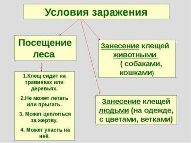 Условия заражения Посещение леса 1.Клещ сидит на травинках или деревьях. 2.Не...
