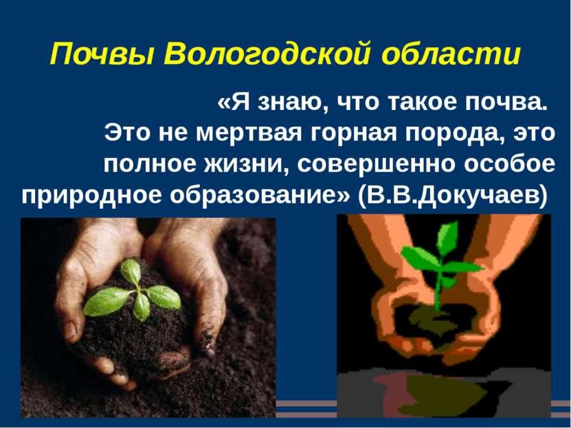 Почвы Вологодской области «Я знаю, что такое почва. Это не мертвая горная пор...