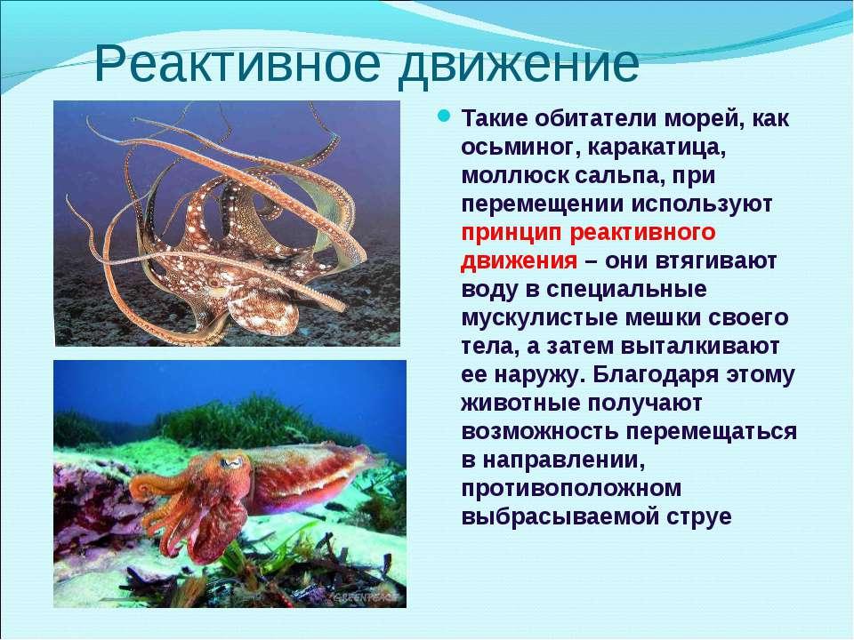 Реактивное движение Такие обитатели морей, как осьминог, каракатица, моллюск ...