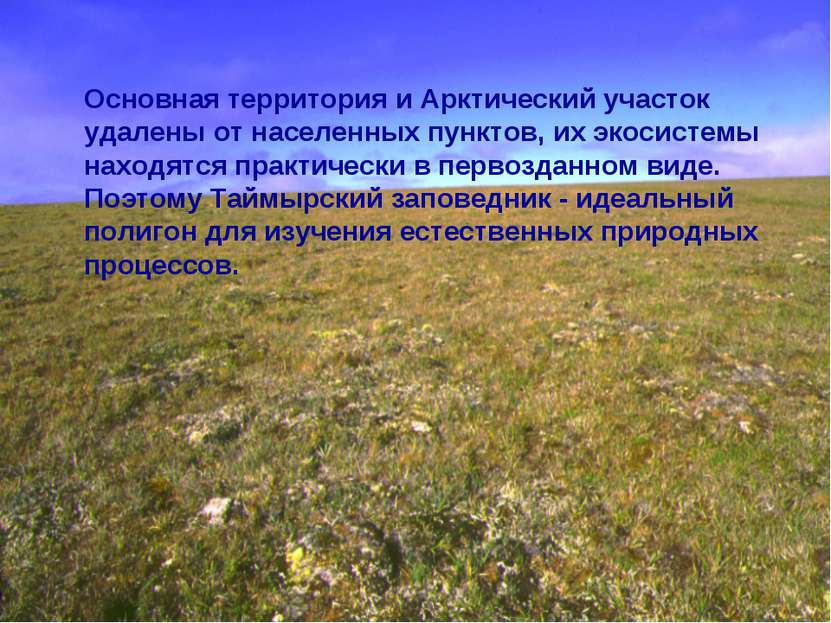 Основная территория и Арктический участок удалены от населенных пунктов, их э...