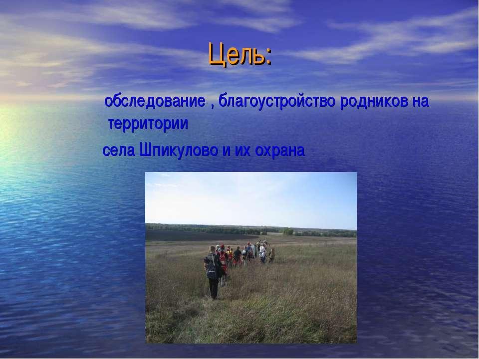 Цель: обследование , благоустройство родников на территории села Шпикулово и ...
