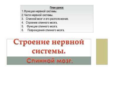 План урока: Функции нервной системы. Части нервной системы. 3. Спинной мозг и...