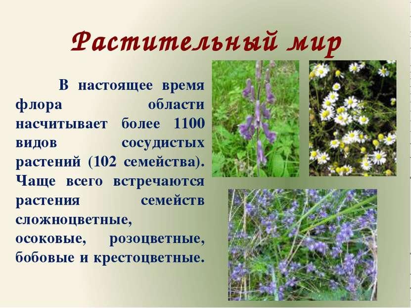 Растительный мир В настоящее время флора области насчитывает более 1100 видов...