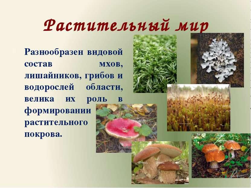Растительный мир Разнообразен видовой состав мхов, лишайников, грибов и водор...