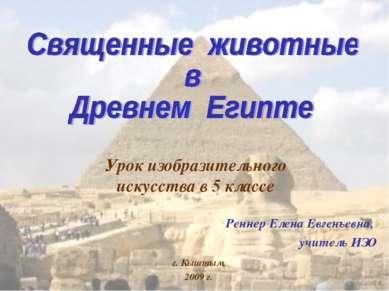 Урок изобразительного искусства в 5 классе Реннер Елена Евгеньевна, учитель И...