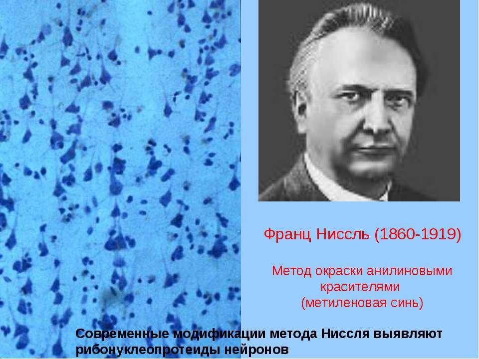 Франц Ниссль (1860-1919) Метод окраски анилиновыми красителями (метиленовая с...