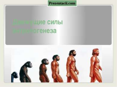 Движущие силы антропогенеза