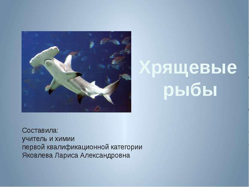 Хрящевые рыбы Составила: учитель и химии первой квалификационной категории Як...