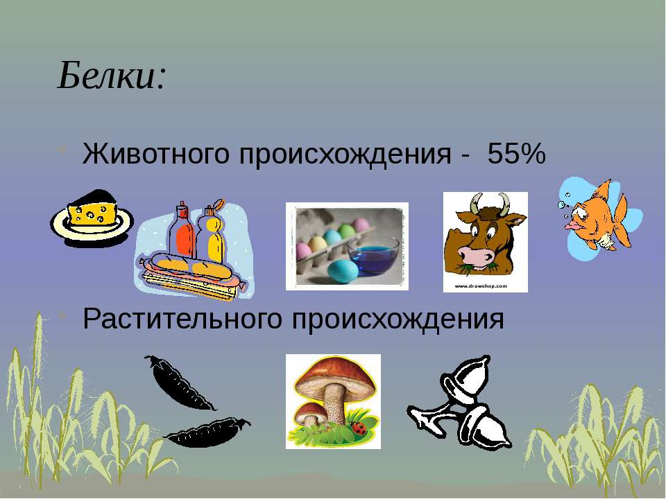 Белки: Животного происхождения - 55% Растительного происхождения
