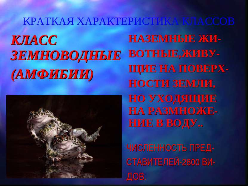 КРАТКАЯ ХАРАКТЕРИСТИКА КЛАССОВ КЛАСС ЗЕМНОВОДНЫЕ (АМФИБИИ) НАЗЕМНЫЕ ЖИ- ВОТНЫ...