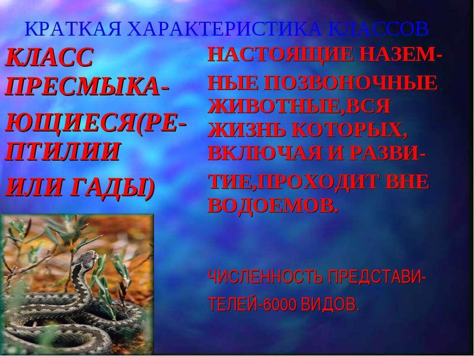 КРАТКАЯ ХАРАКТЕРИСТИКА КЛАССОВ КЛАСС ПРЕСМЫКА- ЮЩИЕСЯ(РЕ-ПТИЛИИ ИЛИ ГАДЫ) НАС...