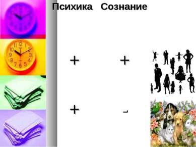 Психика Сознание + + + -