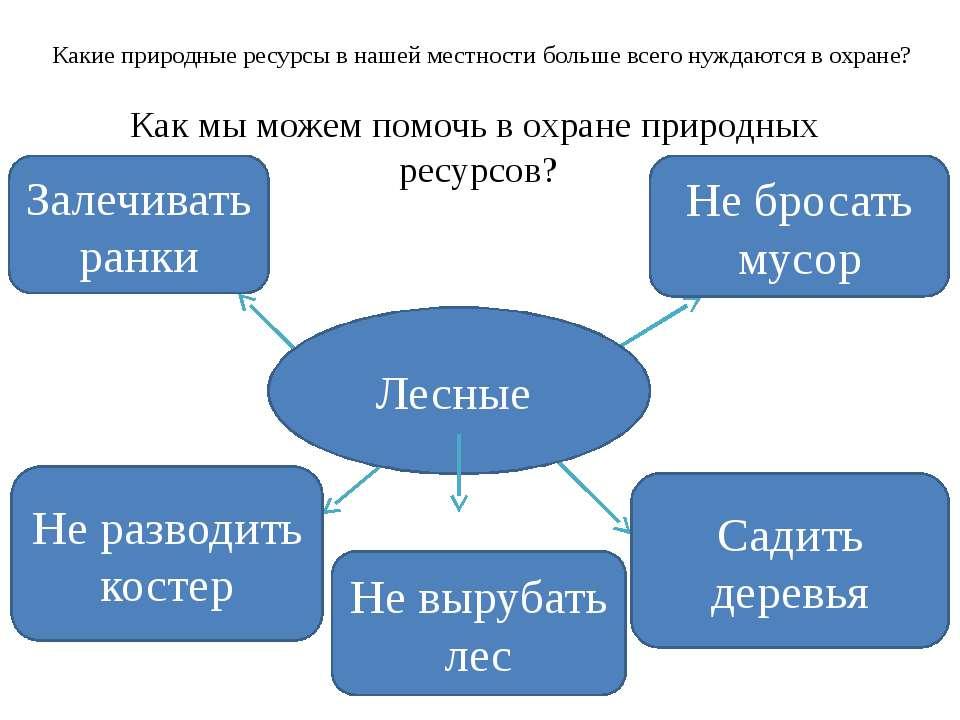Домашнее задание: П.53,вопросы; Приведите 5-6 примеров комплексного использов...