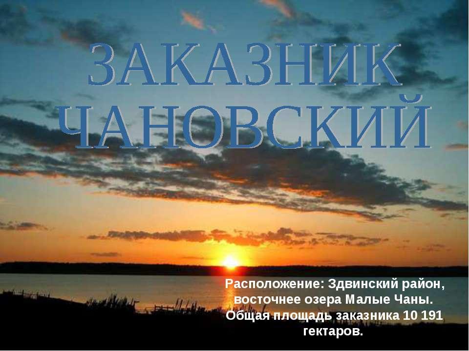 Расположение: Здвинский район, восточнее озера Малые Чаны. Общая площадь зака...