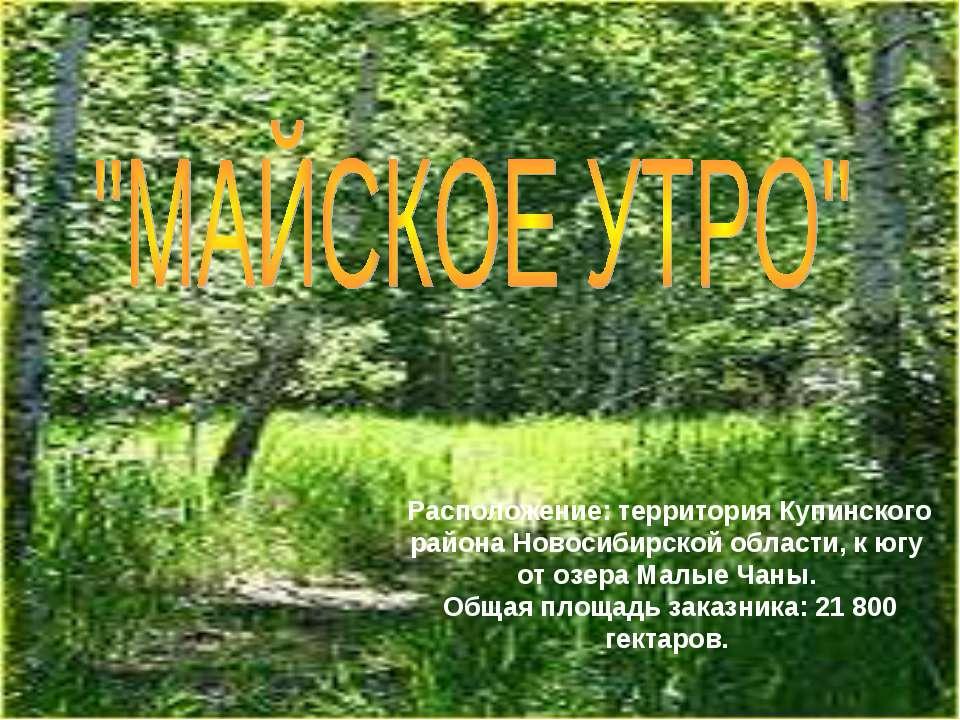 Расположение: территория Купинского района Новосибирской области, к югу от оз...