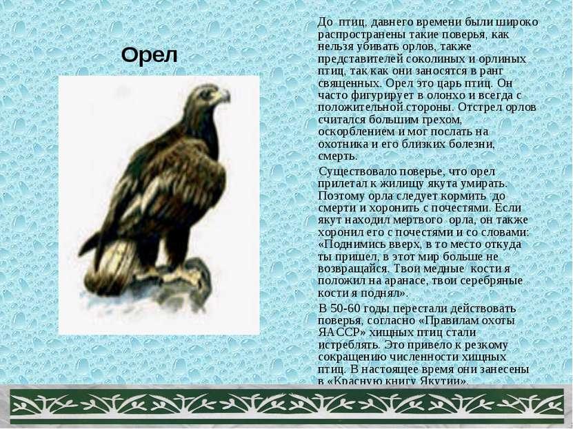 Орел До птиц, давнего времени были широко распространены такие поверья, как н...