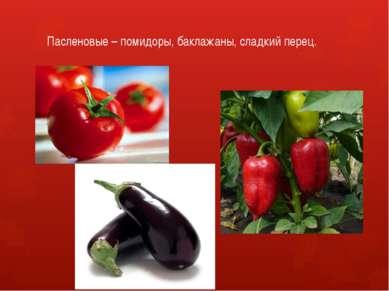 Пасленовые – помидоры, баклажаны, сладкий перец.