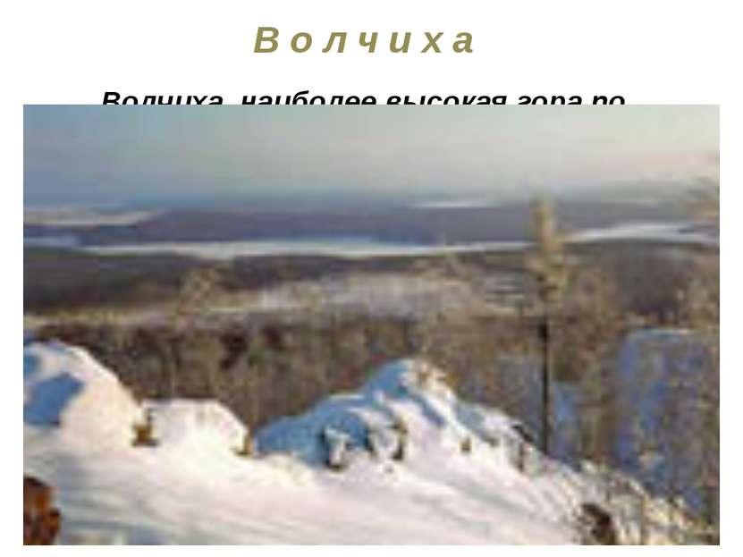 В о л ч и х а Волчиха, наиболее высокая гора по близости Екатеринбурга (высот...