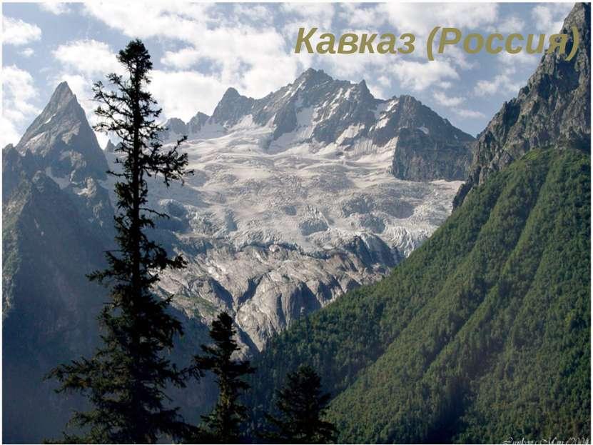 Кавказ (Россия)
