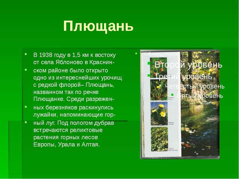 Плющань В 1938 году в 1,5 км к востоку от села Яблоново в Краснин- ском район...