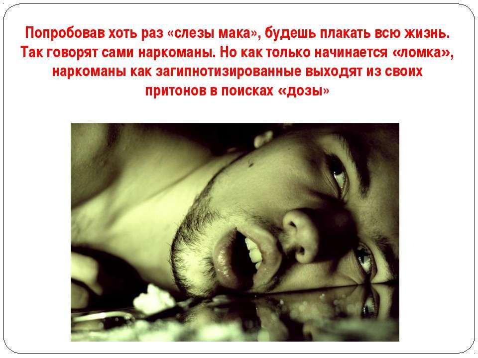 Попробовав хоть раз «слезы мака», будешь плакать всю жизнь. Так говорят сами ...