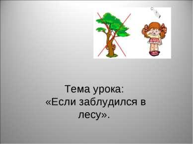 Тема урока: «Если заблудился в лесу».