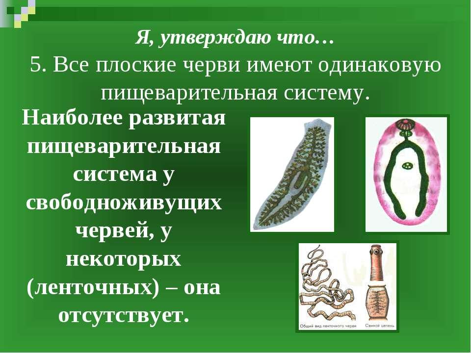 Я, утверждаю что… 5. Все плоские черви имеют одинаковую пищеварительная систе...