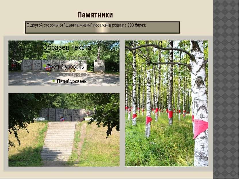 """Памятники С другой стороны от """"Цветка жизни"""" посажена роща из 900 берез:"""