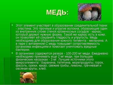 МЕДЬ: Этот элемент участвует в образовании соединительной ткани - эластина. Э...