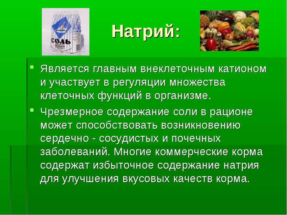 Натрий: Является главным внеклеточным катионом и участвует в регуляции множес...