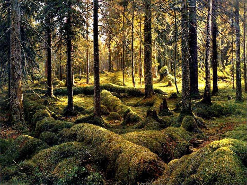 Где находится картина шишкина лес вечером википедия