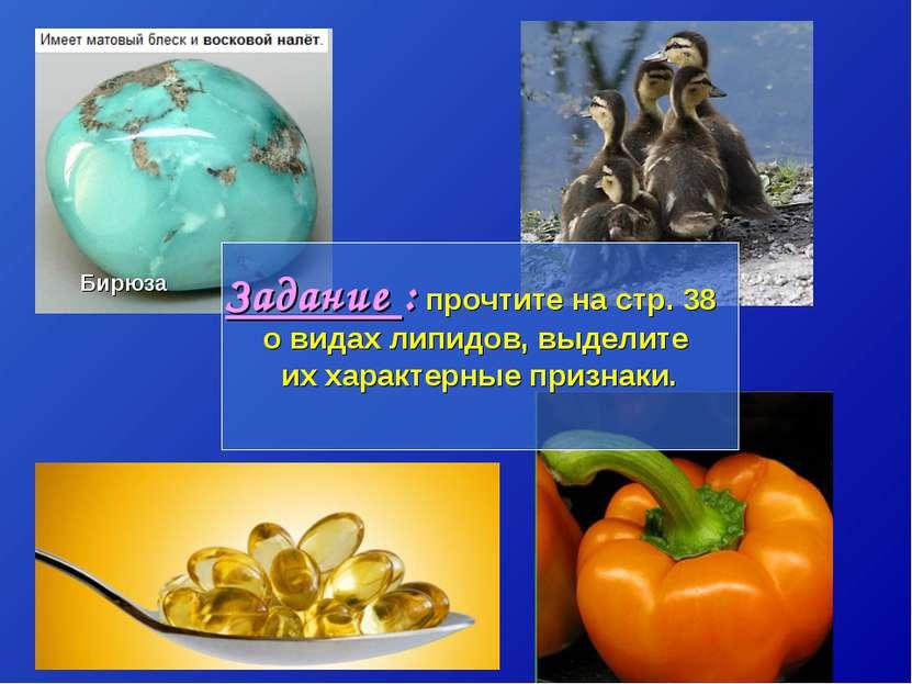 Бирюза Задание : прочтите на стр. 38 о видах липидов, выделите их характерные...