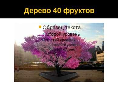 Дерево 40 фруктов