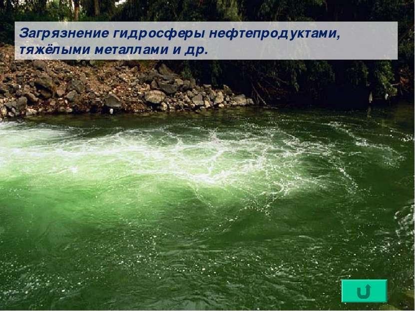 Загрязнение гидросферы нефтепродуктами, тяжёлыми металлами и др.