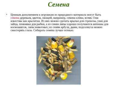 Семена Ценным дополнением к игрушкам из природного материала могут быть семен...