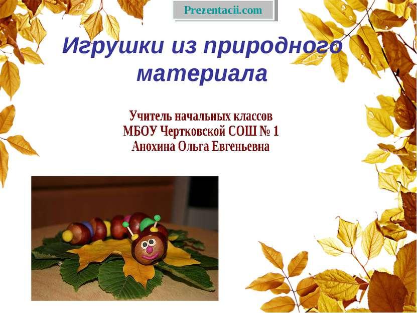 Игрушки из природного материала Prezentacii.com