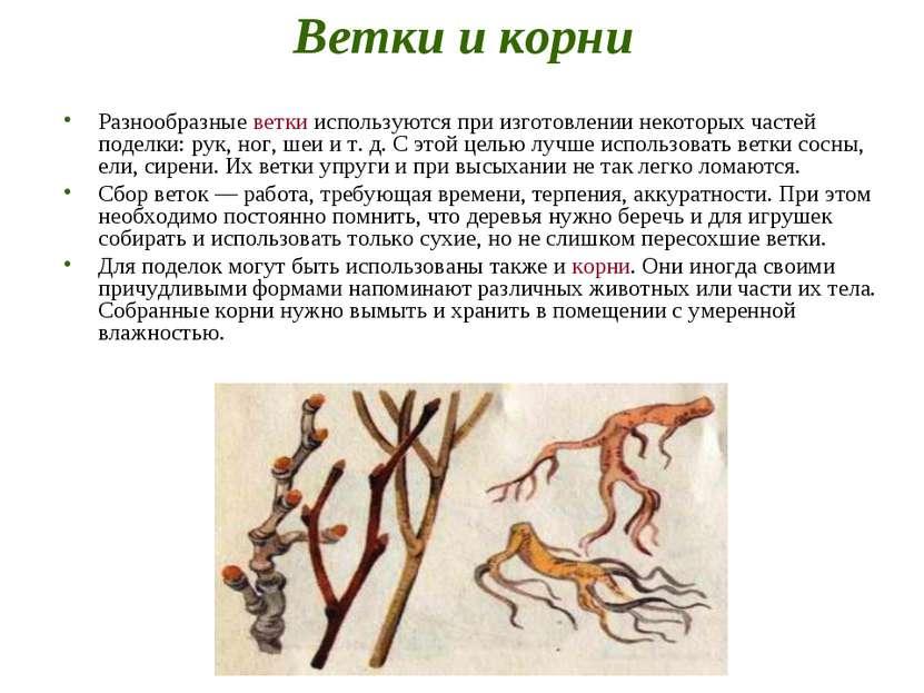 Ветки и корни Разнообразные ветки используются при изготовлении некоторых час...