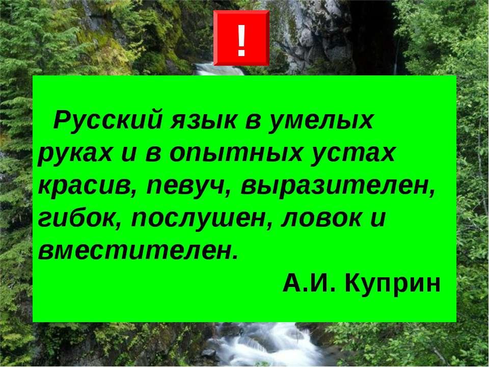 Русский язык в умелых руках и в опытных устах красив, певуч, выразителен, гиб...