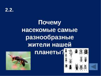 2.6. К какой группе живых организмов относится человек?