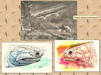 Фауна девонских морей