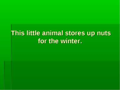 This little animal stores up nuts for the winter.