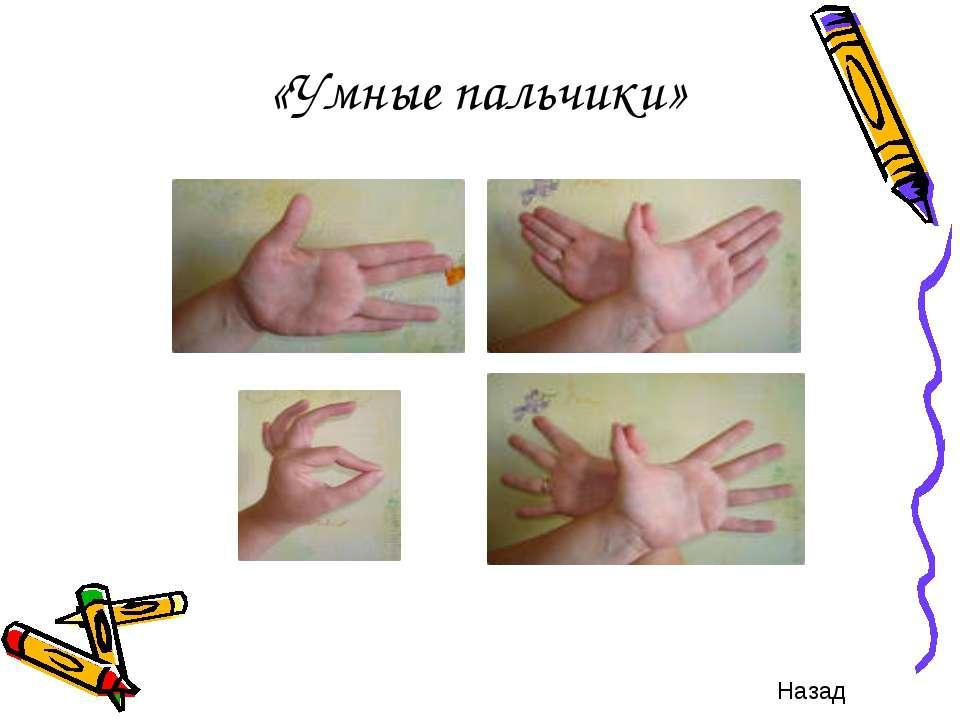 «Умные пальчики» Назад