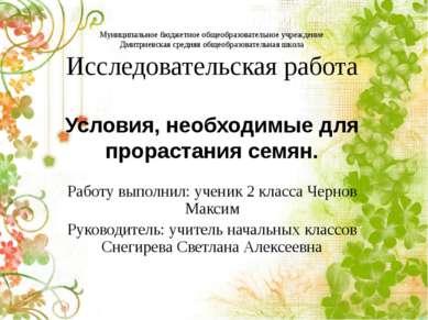 Муниципальное бюджетное общеобразовательное учреждение Дмитриевская средняя о...